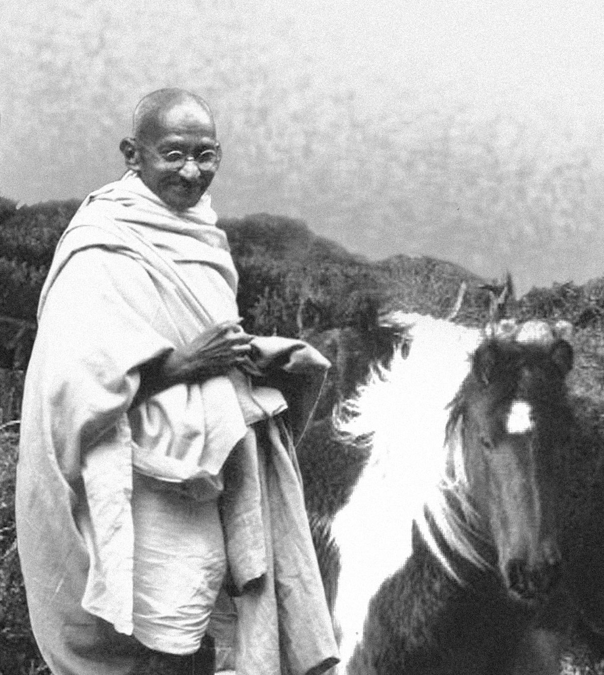mahatma ghandi 1896 - nace mahatma ghandi, líder político de la india mohandas karamchand gandhi nació en porbandar (actualmente estado de.