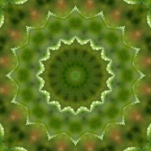drops-Mandala